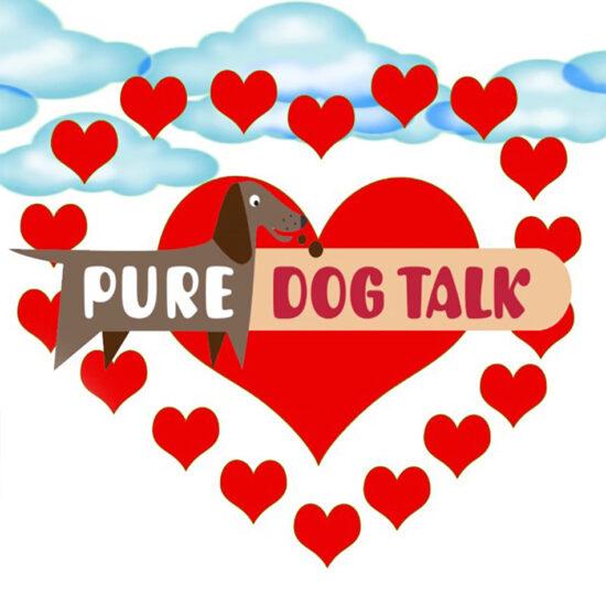 Pure Dog Talk | Video Animation
